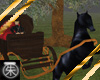}T{ Horse Drawn Carriage
