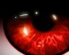 Vampire Red Eyes, Bright