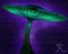Mushroom, Flat Mint