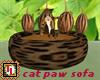 cat paw sofa