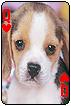 sticker_11685956_47143585