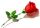 sticker_17801985_36199339