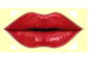 Sticker_14903160_47474046