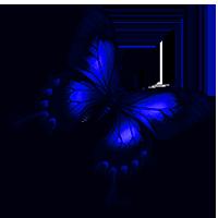 sticker_30676001_47595252