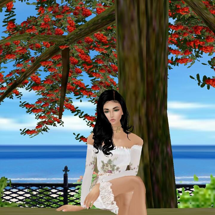 Guest_Linda518