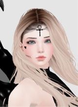 Guest_Catty38