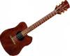 Custom Made Guitar