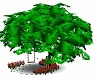 - Love Tree green