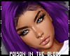 ** Purple Gachin