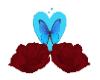 roses set papillon