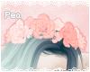 P! Vanilla Rose Crown