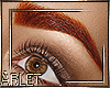 Ginger Red Eyebrowns