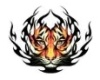 *sw Tiger Tattoo Back (M