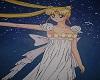 Princess  Serenity armor
