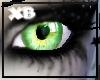 XB- PALE GREEN EYES