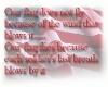 Our flag....