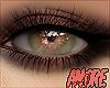 $ Hazel Eyes