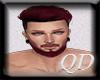 QD : Pax + Beard HD