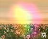 MayeFilter8 Rainbow