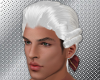 Colonial Powdered Wig