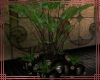 ~DC~ Planter