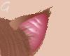 Cavalli Ears 2