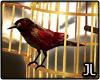JL. Orla Bird Cage