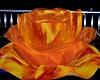 Fire Rose Light