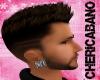 Dwayne Earrings Silver