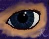 Obsidian Eyes M