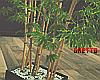 ϟ Japanese Bamboo