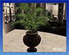 Plants xMAX