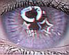 Star Eyes Lavender