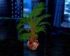 western plant 2