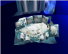 Blue White Wolf Rug