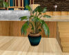 [AM] Potted Plant 3