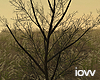 "Iv""Dead Tree2"