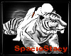 White Tiger Hug 4