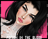 ** Elabellei Black