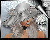 d3� Silver Hat