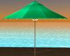 Tropical Green Umbrella