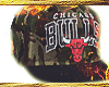 Bulls SnapBack Bckwards