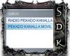 #SDK# RADIO ANDROMEDA