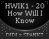 How Will I Know Remix