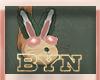 BYN bunny slippers