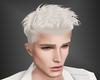 Kata Platinum Blond