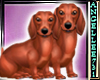 doxie twins sticker