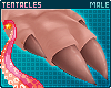 🌺 Pua'a   Hands M