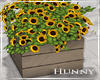 H. Sunflowers