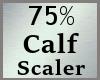 75% Calf Calves Scale MA